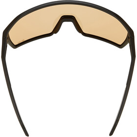 Alpina Ram HVLM+ Glasses, negro